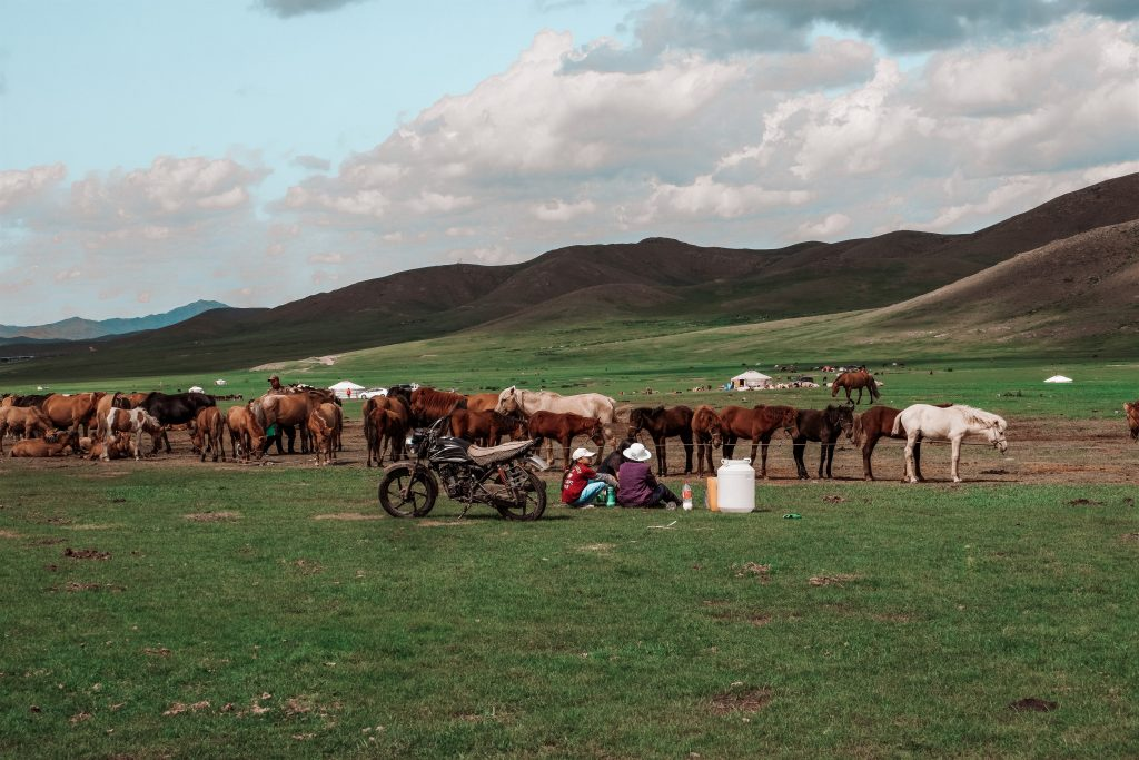 Mongolia Nomad Life